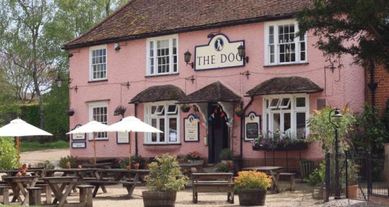 Time To Reveal The 2018 Dog-friendly Pub of The Year