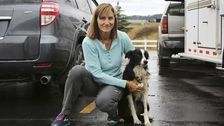 Washington Woman Quits Job, Takes 57 Days To Find Her Lost Katie Dog