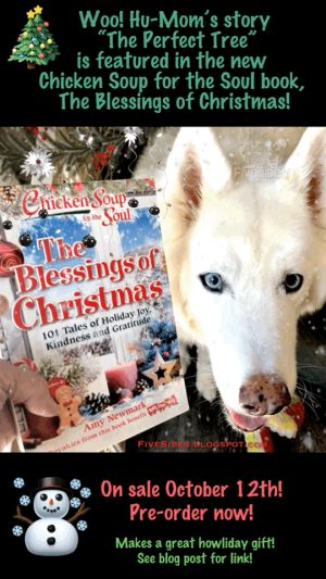 Book Nook Time! FiveSibesMom Published in New Christmas Chicken Soup for the Soul Book!