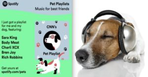Spotify Creates Personalized Playlists For Your Dog
