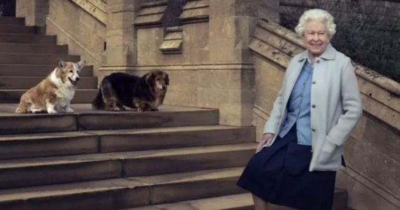 Queen Elizabeth Adds 2 New Corgi Pups To The Royal Family
