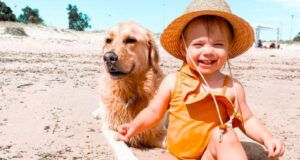 Baby Girl And Her Golden Retriever Are The Absolute Best Of Friends