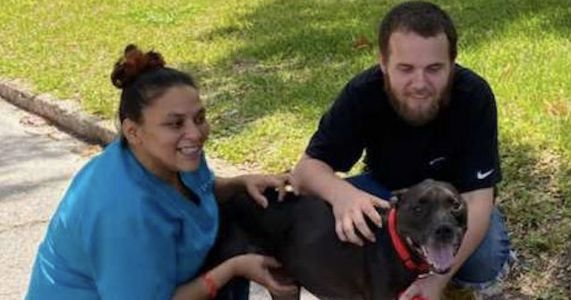 Fate Brings Formerly Homeless Man And Surrendered Dog Back Together
