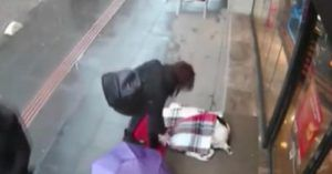 Camera Catches Woman's Heartwarming Gesture Toward Shivering Stray Dog