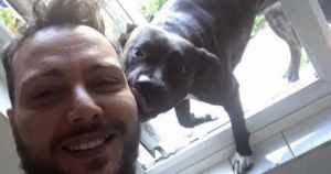 Chef Sues Family After They Unknowingly Adopted His Lost Dog