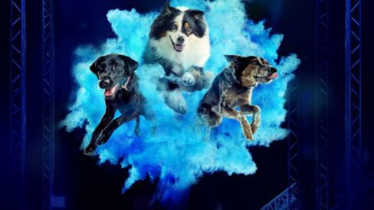 Dug Up at Dogster: July 2021 Dog Events and Dog Holidays