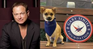 Gary Sinise Created An Initiative For Police And Military Dogs On Veterans Day