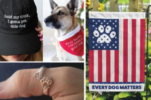 30 Incredible Stocking Stuffers for Dogs & Dog Lovers