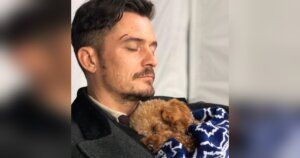 Heartbreaking Update: Orlando Bloom's Lost Dog Presumed Dead