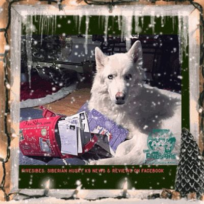 'Tis the Season for Greeting Cards! Recycle Those Used Stamps To Help Dogs in Need!