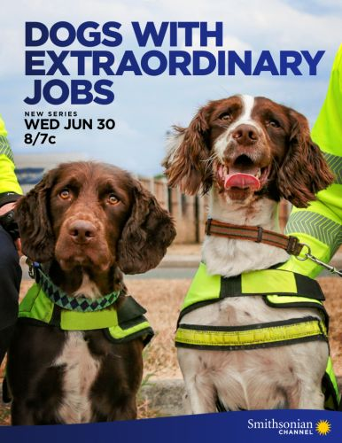 NEW SERIES! Dogs With Extraordinary Jobs premieres on the Smithsonian Channel