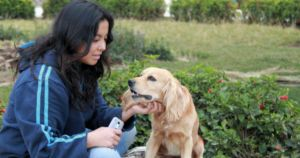 Petting A Therapy Dog Benefits Students For Weeks, Study Finds