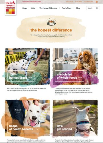 The Honest Kitchen Tearsheets- Commercial Animal Photography
