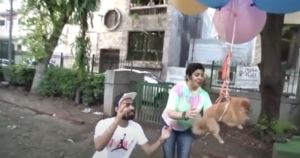YouTuber Arrested For Tying Balloons To His Dog & Floating Him Away
