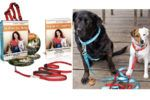 Win the Walk In Sync™ Home Study Course with Harness + Leash
