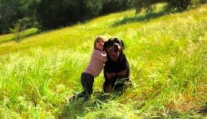 This Woman decided to break the stereotypes of the Rottweiler after she was criticized for having one while pregnant