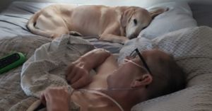 Veteran and Loyal Dog Live and Die Together