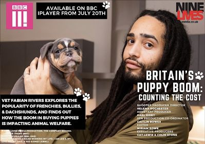 TV REVIEW: Britain's Puppy Boom: Counting the Cost
