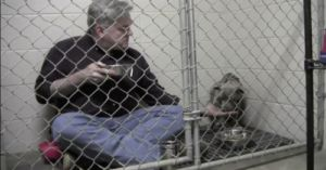 Vet Reunites With Terrified Pup He Won Over With A Meal