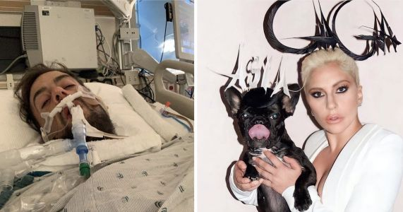 UPDATE: Lady Gaga's Dogwalker Recalls Events During Violent Dognapping