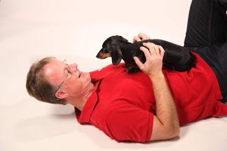 Is It OK To Take A Dog Training Break?