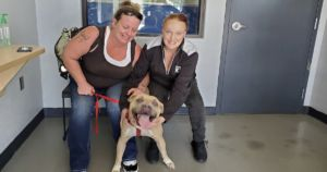 Pit Bull Reunited With Mom's Family 9 Months After Deadly Crash