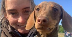 Frightened Dachshund Lost Three Days Follows His Nose Home