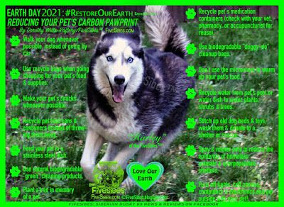 EarthDay Tips to Reduce Your Dog's Carbon Pawprint on a FiveSibes FlashbackFriday!